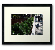 Urban Greenery Framed Print