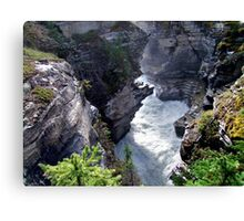 Athabasca River Gorge Canvas Print
