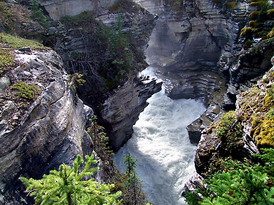 Athabasca River Gorge by George Cousins
