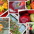 Autumn&#x27;s Collage of Beauty   by Dawn M. Becker