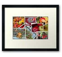 Autumn's Collage of Beauty ©  Framed Print