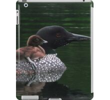 Loons of Dellview Isle iPad Case/Skin