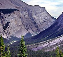 Bow River Valley by George Cousins
