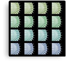 Color Scales Canvas Print
