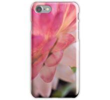 Straw Flower Macro iPhone Case/Skin