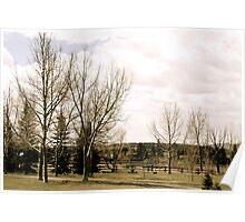 Springtime Park Poster