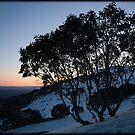 Mount Buller Sunset by Andrew Wilson