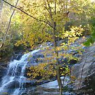 Crabtree Falls in Autumn ^ by ctheworld