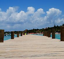 Walk the Plank by Loveley Photography