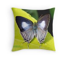 Oh for some sun Throw Pillow