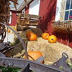 Harvest Time © by jansnow