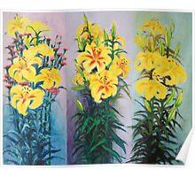 orchids trio Poster