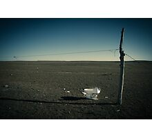 vantage point Photographic Print