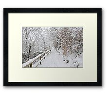The winter lane Framed Print
