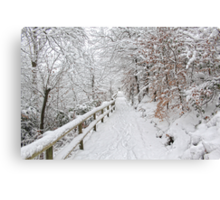 The winter lane Canvas Print