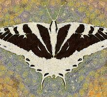BUTTERFLY CHANGES WEATHER by Jean Gregory  Evans