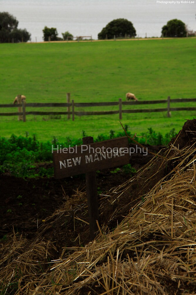 Manure by Hiebl Photography
