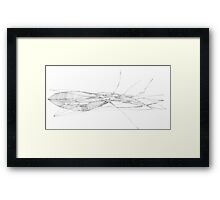 fish dance Framed Print