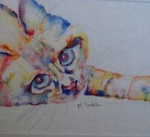 cat by mary saifelden
