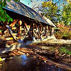 Naperville Covered Bridge by James Watkins