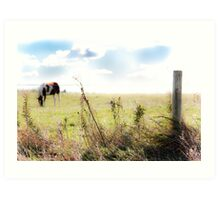 Country Ambiance Art Print