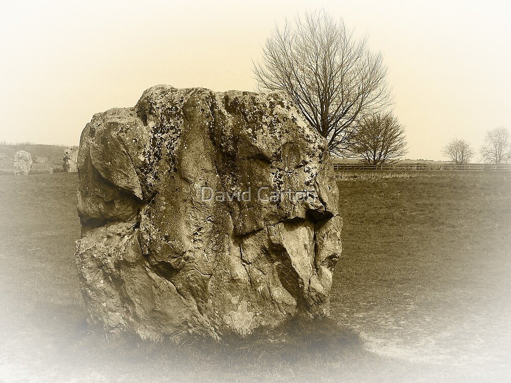 The Neolithic stones, Avebury by buttonpresser
