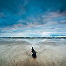 Lonely, Peggs Beach Tasmania by NickMonk