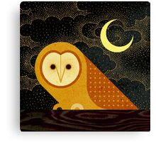 Barn Owl Canvas Print
