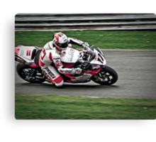 Simon Andrews Canvas Print