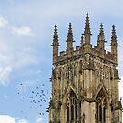 York Minster with birds by Chris West