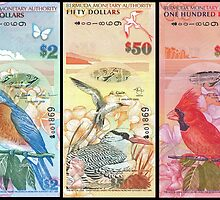 Birds Of Bermuda On Banknotes by Robert Abraham