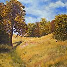 Autumn Impression, Barnetts Demesne by Les Sharpe