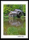 A drive to Mabry Mill by lynell