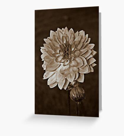 Sepia Flower Greeting Card