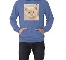 Ginger Kitten (non-clothing products) Lightweight Hoodie