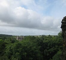 The View From Blarney Castle by WoodenDuke