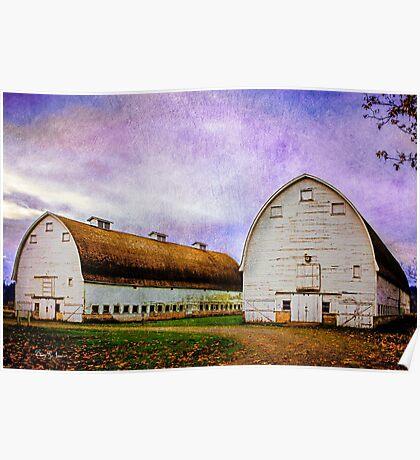 Nisqually Barns  Poster