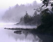 Misty Morning at Kennebec Lake, Ontario by Debbie Pinard