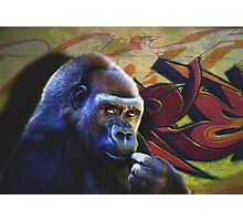 Gorilla in the Hood Photographic Print