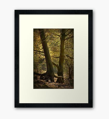 Mystic Touch Framed Print