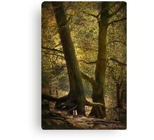 Mystic Touch Canvas Print