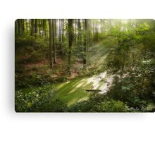 The Land Of Fairy Tales Canvas Print