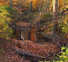 Fall Farragoes by Deb  Badt-Covell