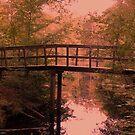 Bridge, Stream and Autumn Forest by ienemien