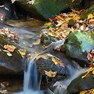 Teskewata Falls by Jason Vickers