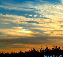 The Sky is the Limit by Deb  Badt-Covell