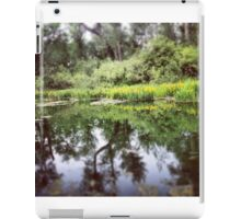 Reflections of the Wetlands  iPad Case/Skin