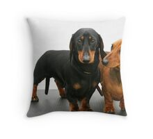 Miniature smooth dachshunds Throw Pillow