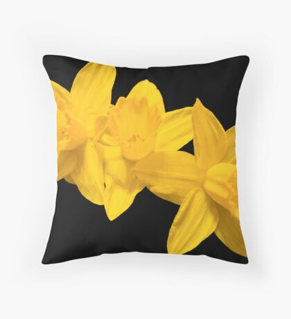 Daffodil Triplets on Black Background Throw Pillow
