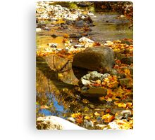 That meandering river of leaves and gold Canvas Print